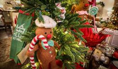 https://admin.acornhomeandgarden.com/uploads/thumbnail_Acorn_Christmas2019_7_27b24a07a7.jpg