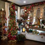 https://admin.acornhomeandgarden.com/uploads/thumbnail_Acorn_Christmas_2020_4146_a989e4901d.jpg