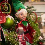 https://admin.acornhomeandgarden.com/uploads/thumbnail_Acorn_Christmas_2020_5154_d45ee12afb.jpg